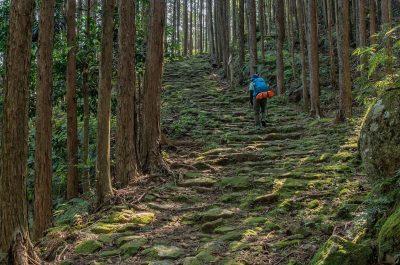 Chikatsuyu 1, Japan Tours, RediscoverTours.com