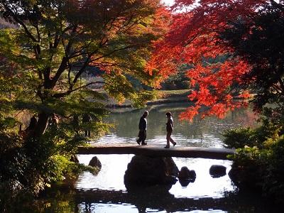 Rikugien Garden in Tokyo, Rediscover Tours